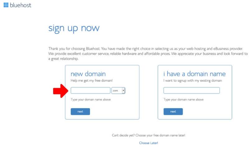 Bluehost Choose Domain
