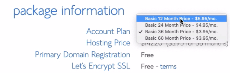 Bluehost Package Choice